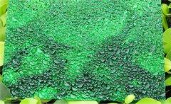 绿色颗粒板